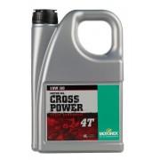 CROSS POWER 4T 10W60 1L